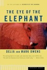 Eye of the Elephant