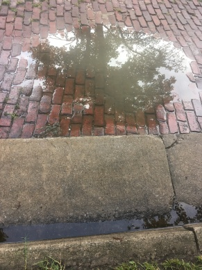 Bricks and puddle